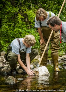 stream water monitoring training